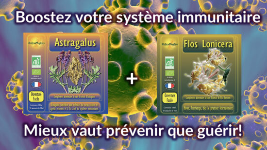 Astragale Bio Ampoules + Flos Lonicera Bio Ampoules Astraphytos